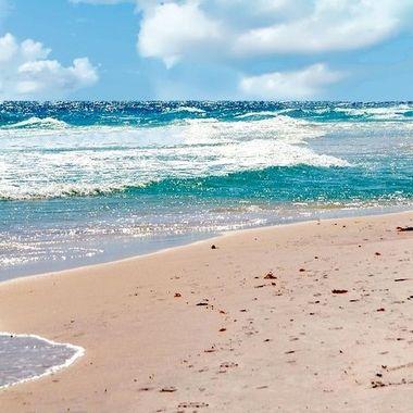 Ocean & Shore