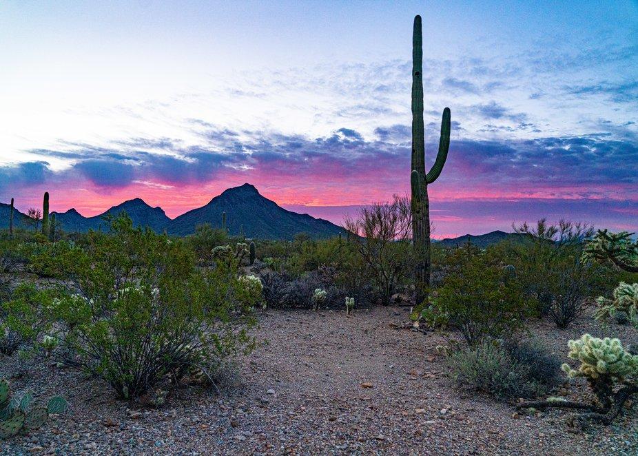Wide Tucson Mountain Sunrise