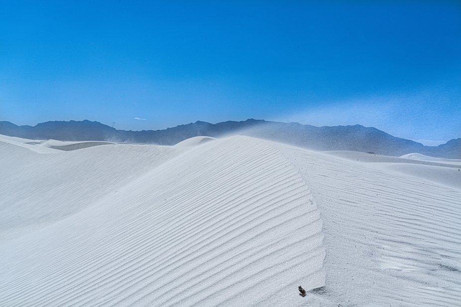 Windswept Dune Top