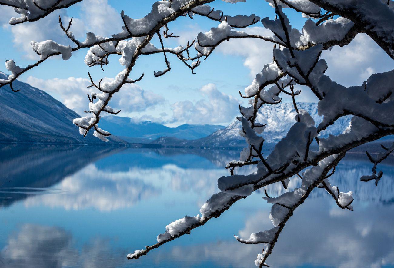 Spring in Glacier Park