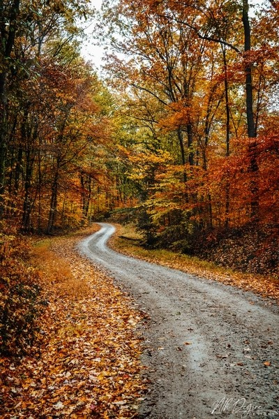 The Path to Autumn Secrets