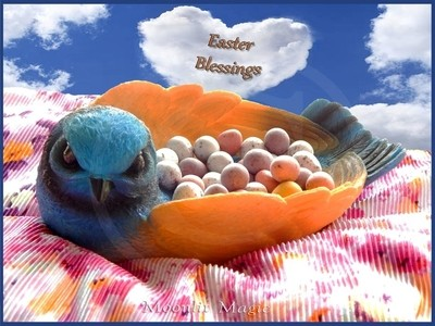Bluebird Blessings at  Easter