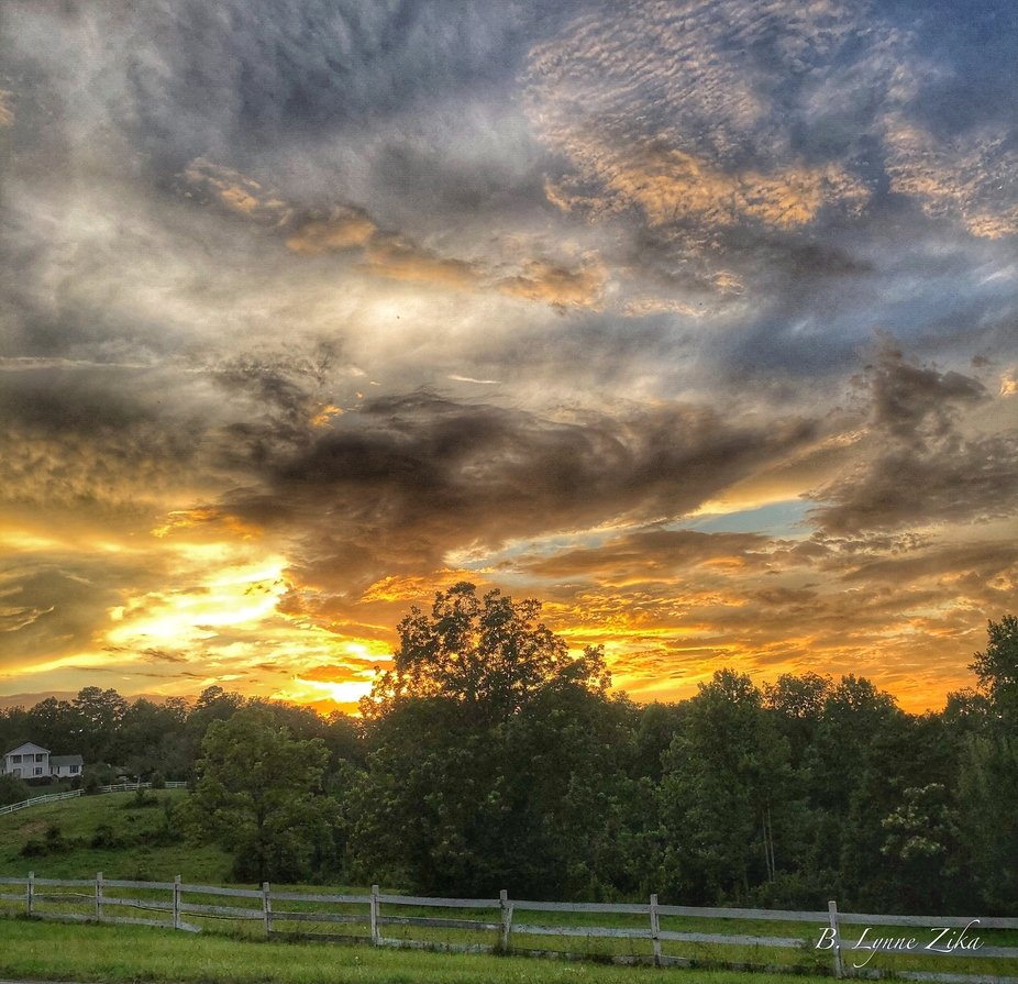 Upscale, Farm, Country Home, Woods, Forest, Rural, Fence, Sunset