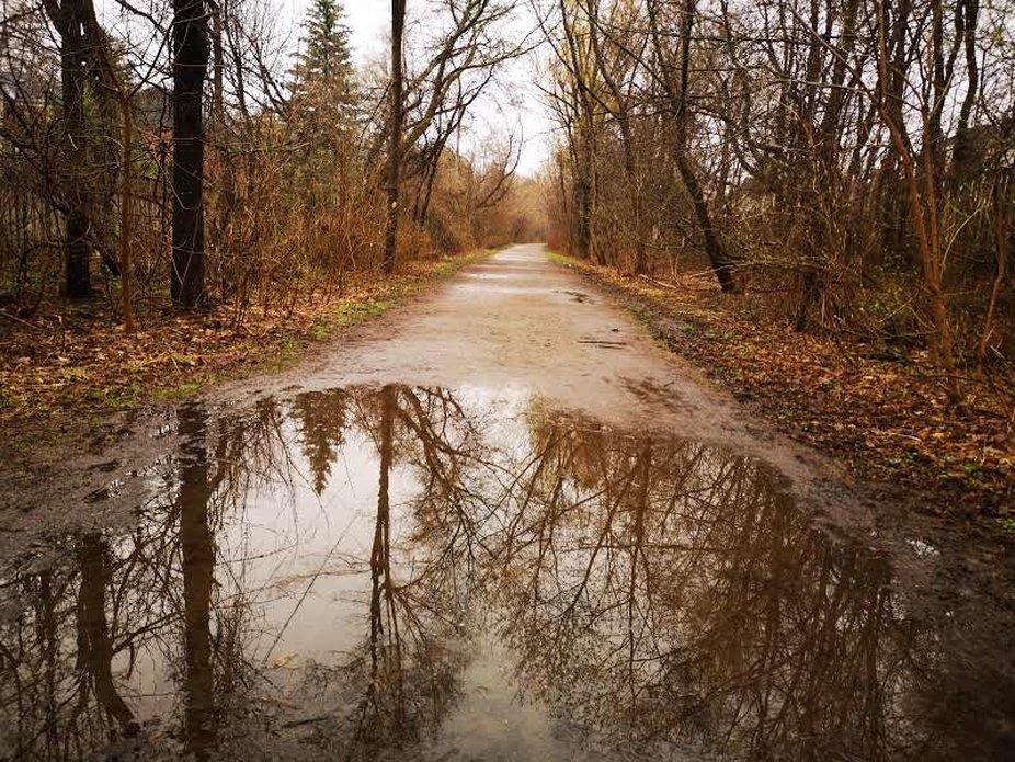 MAGIC RAIN BY YANNIS LOBAINA 3