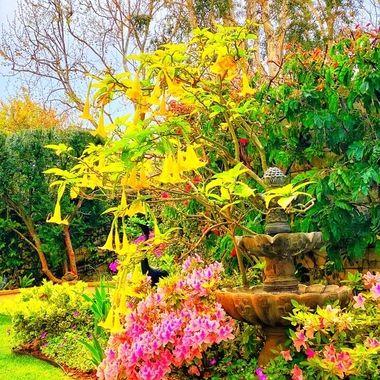 Good spring rains bring forth vibrant spring colors!