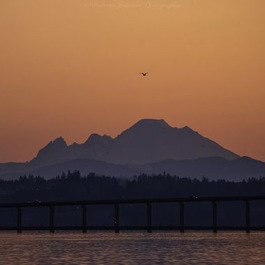 Mt. Baker a glow... Another Beautiful beginning to the new day. Hood Canal, Washington, USA
