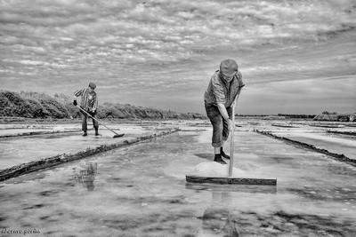 salt tradition