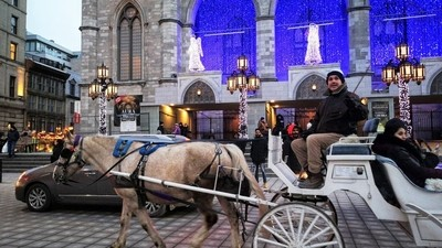 Carruaje- Carriage  in Montreal By Yannis Lobaina