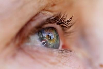 Wife's Mandy's Eye in Garden