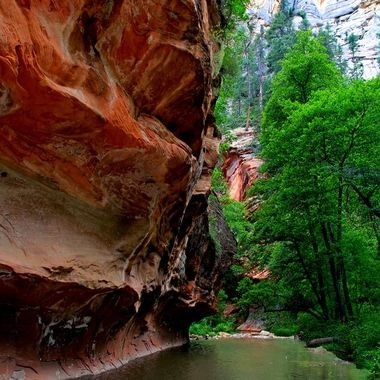 oak Creek Canyon. The People's choice of the Art show