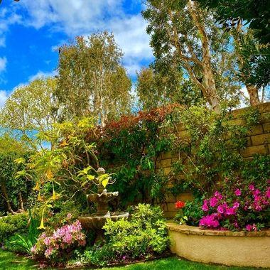 Patio garden!