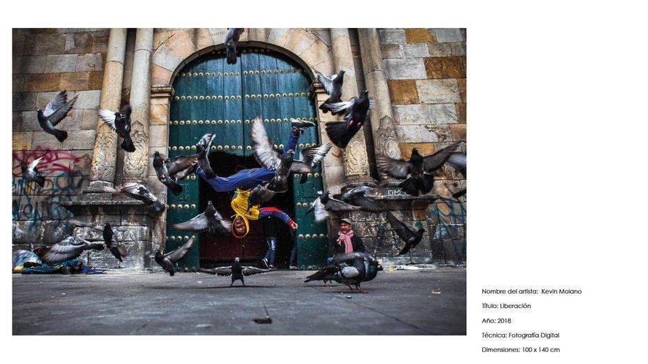 portafolio artistico kevin molano ph 20218