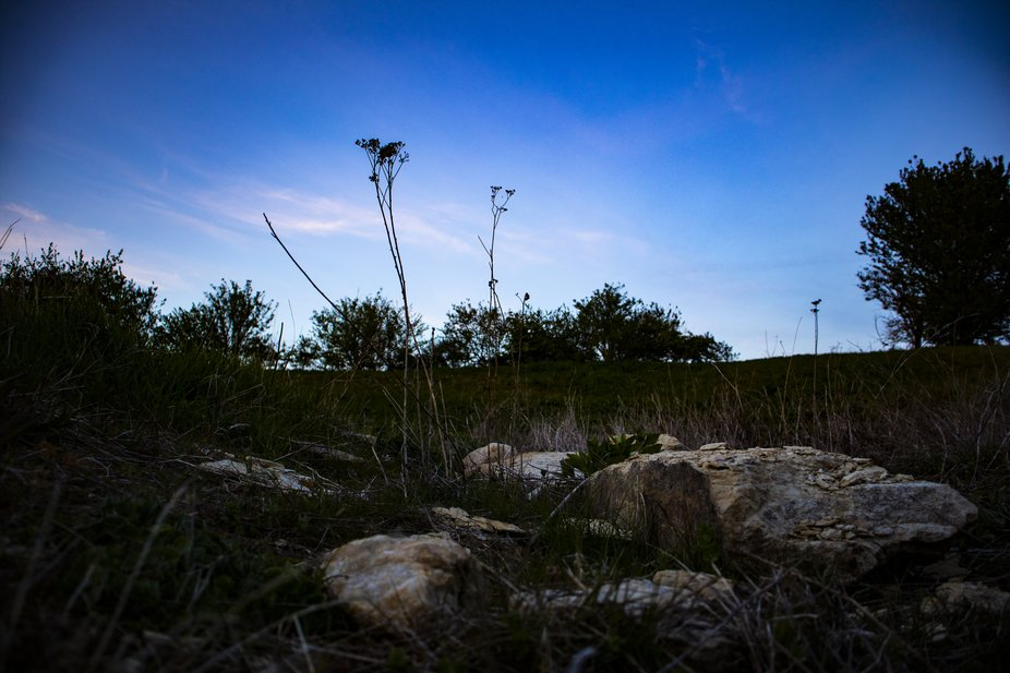 I took this photo early evening before the sunset. I took it at a low angle to emptherise the det...