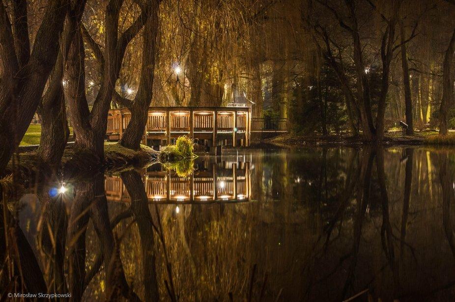 Nocne ujęcie w parku
