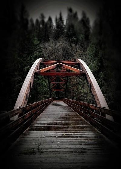 Tioga Bridge ( Roseburg Or.)