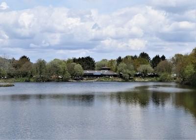 Knoll Park Neath