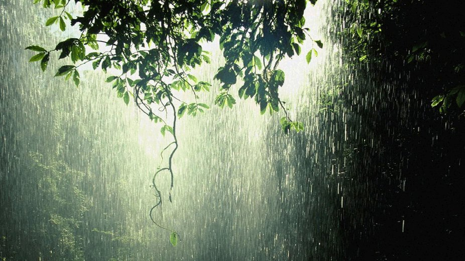 969875-beautiful-nature-rain-wallpaper-1920x1080