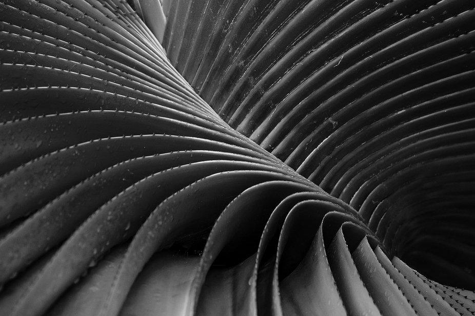 Plant close-up, Kew Gardens, England