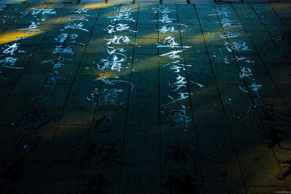 This was also taken in the early morning along the banks of West Lake, in Hangzhou, China. The el...