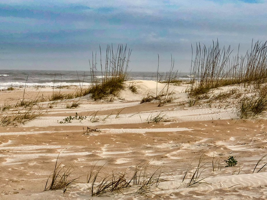 Cold and windy on Anastasia Island but the streaks of sand colors made this look like a painting.