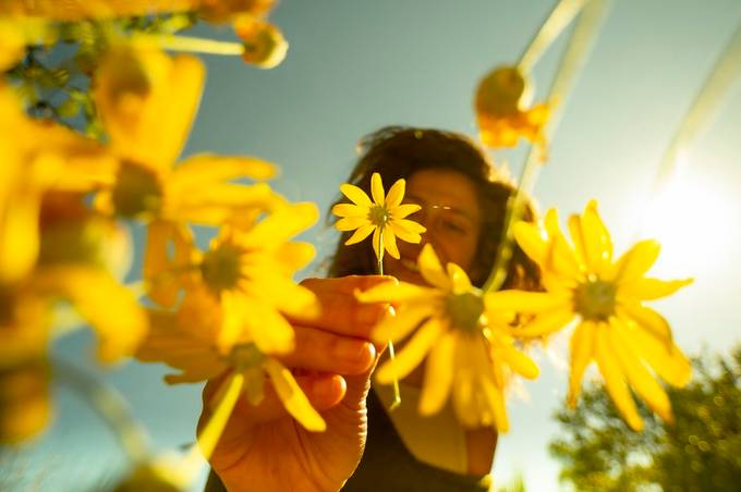 _DSC1016 by shayw - Capture Yellow Photo Contest