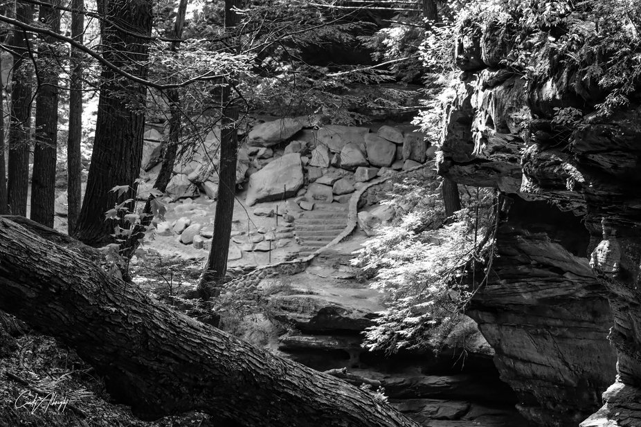 A walk through Hocking Hills State Forest reveals this inviting combination of rocks, trees and s...