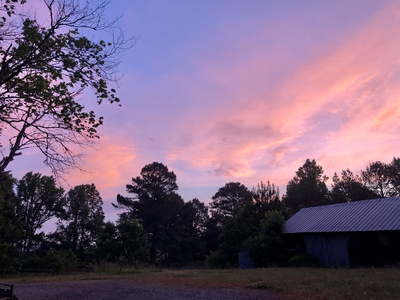 """I created a copy of this early morning shot which includes audio of the lovely birdsong here, """"here"""" being a rural mountaintop in Alabama."""