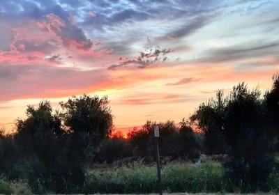 California Sunrise Aug 17 2020