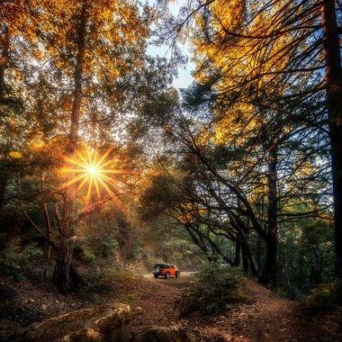 Saratoga Trail