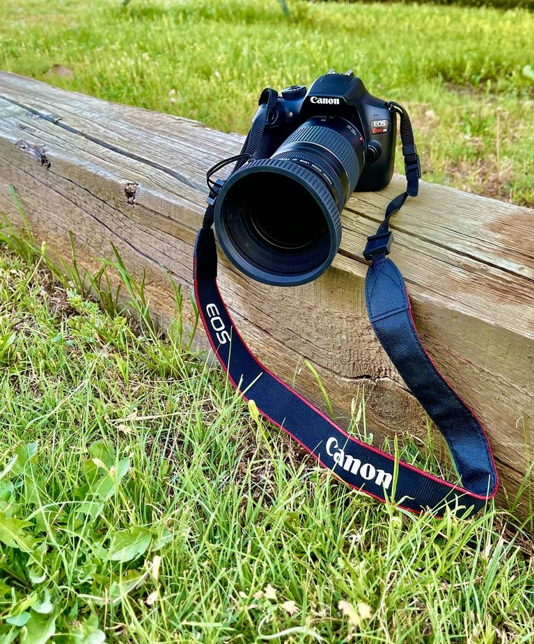 My canon camera I love so much.