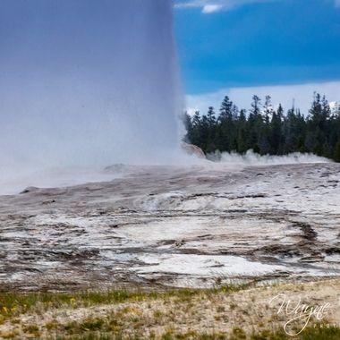 Close up of Old Faithful on 6/24/2021 eruption.