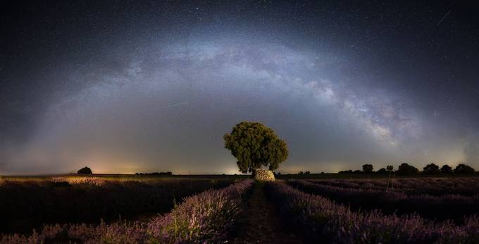 Mill way over the lavender fields by josefacalzado