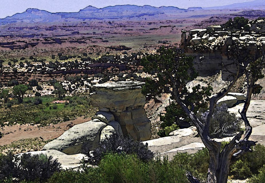 What a breathtaking view with vibrant colors as far as your eyes can see. Cactus and rock formations are everywhere.