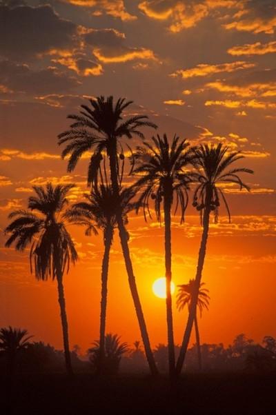 El Fayoum oasis Egypt