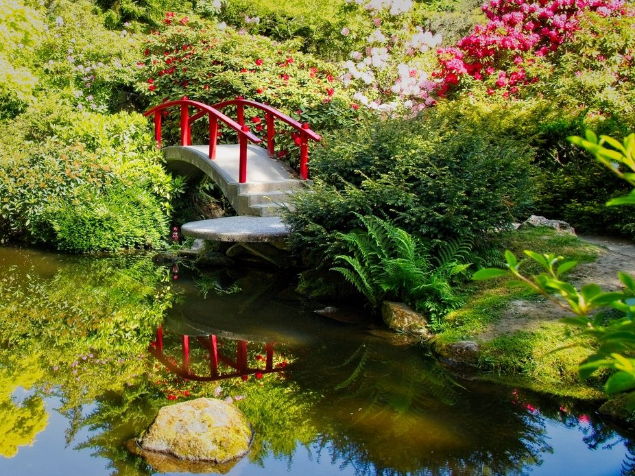 A small bridge in a Seattle Japanese garden surrounded by beautiful Spring colors.