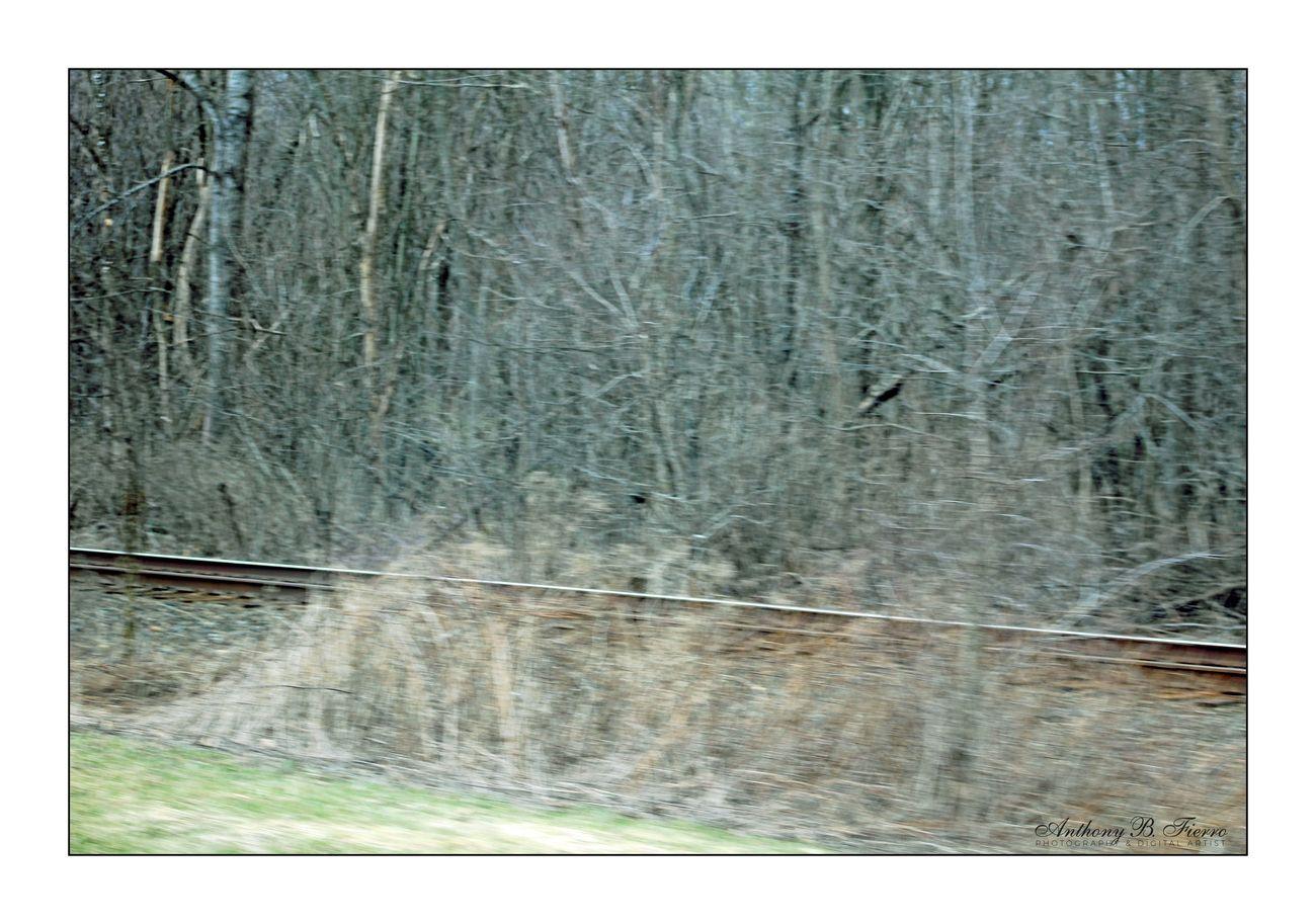 Rail Road (28)