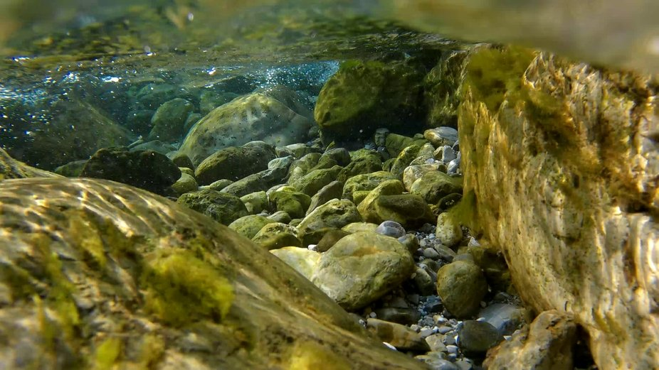 Another Underwater Mountain Brook Shot from July 2021, this time I was looking for sun reflection...