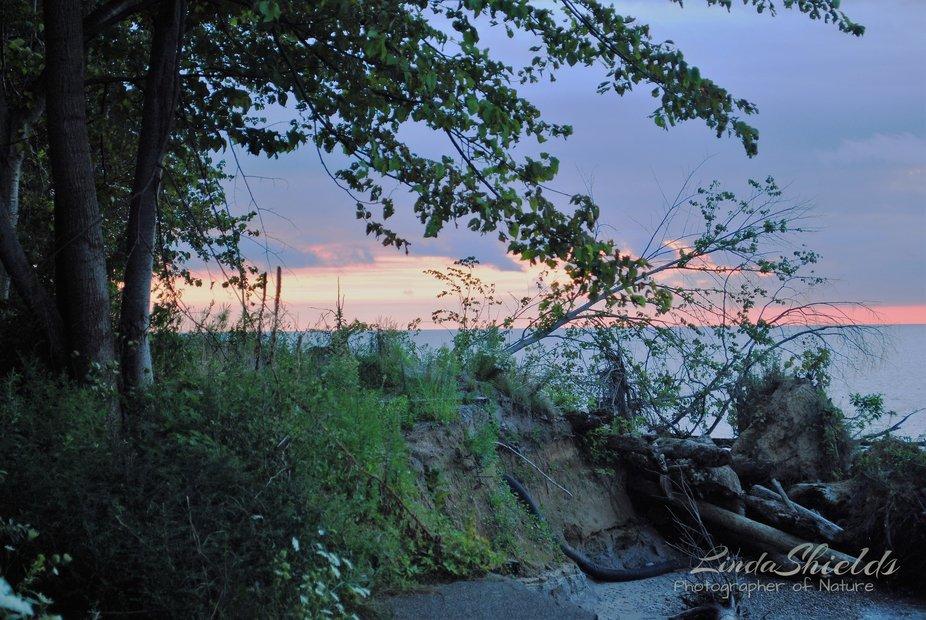 Summer nights bring sherbet colored skies.