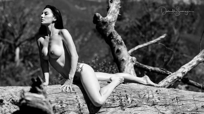 shoot today in the San Bernardino Mountains