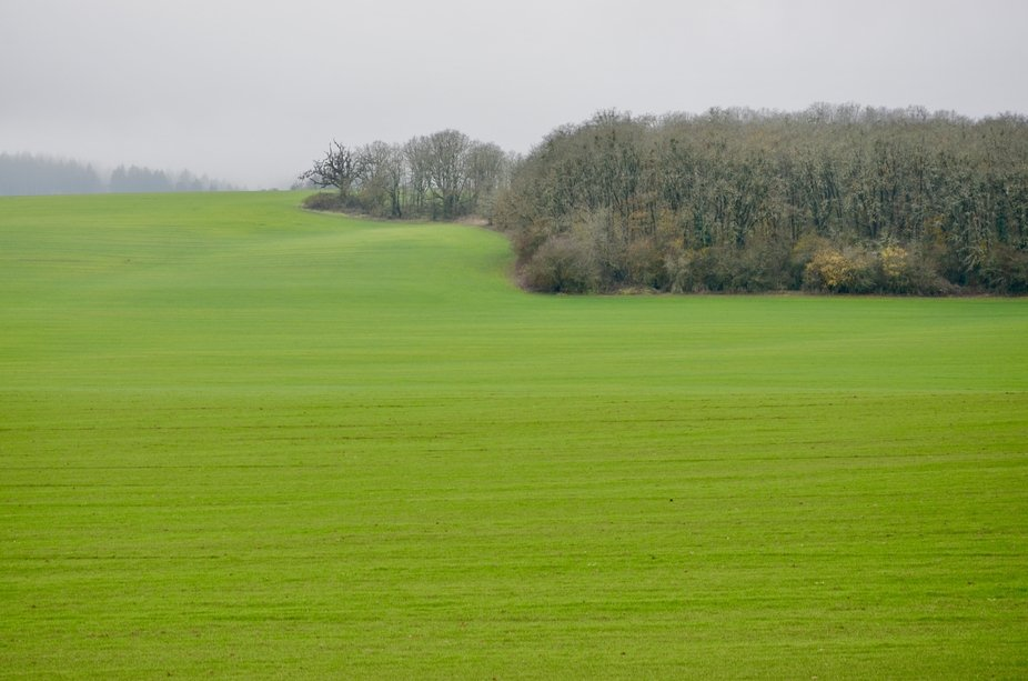 Farm land in the hills of western Oregon