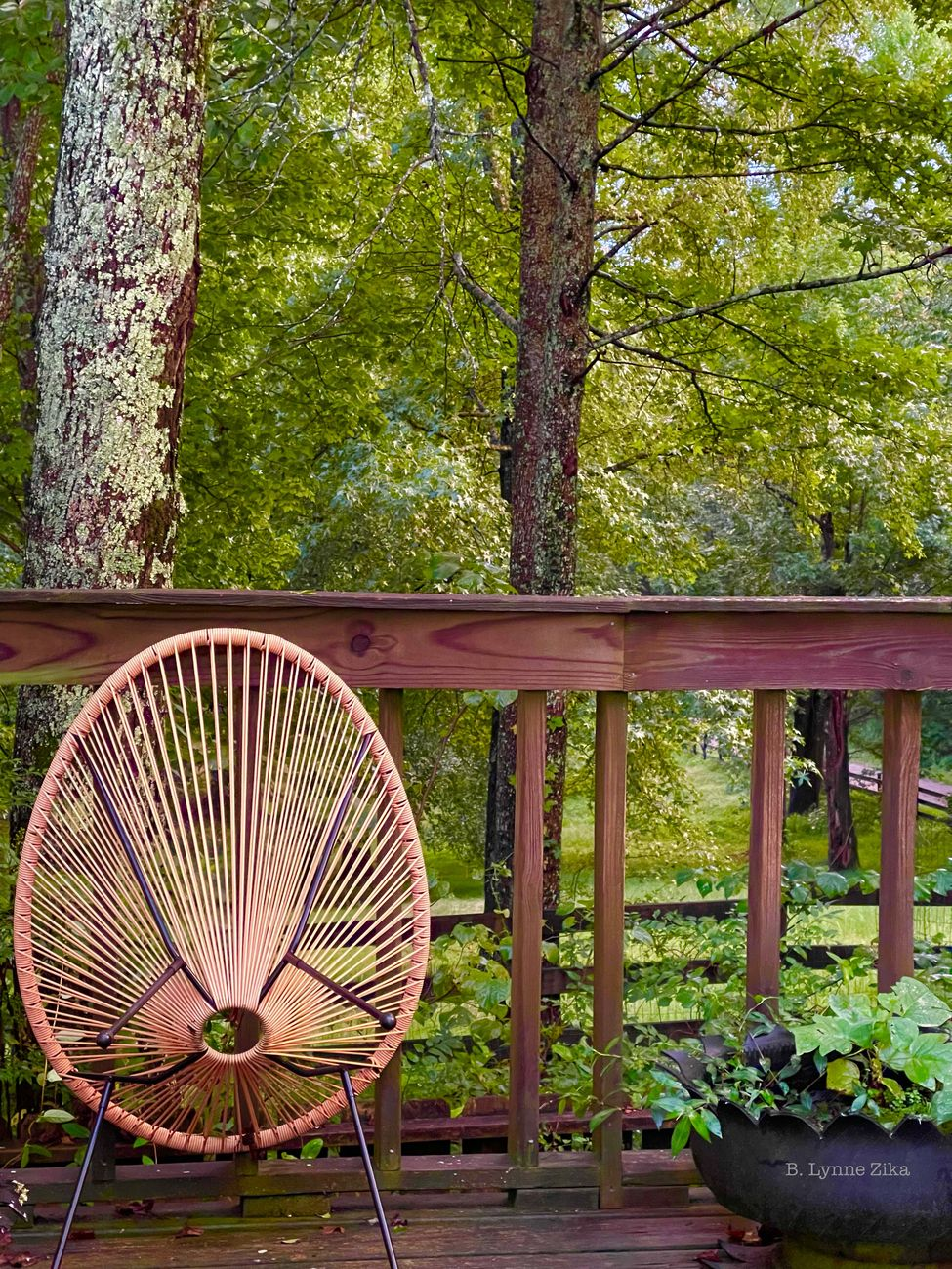 My soggy deck
