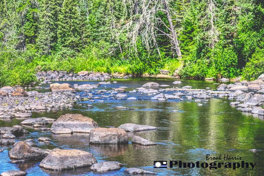 Spending some time in Northern Minnesota, walking on the river where usually the water is a good two feet higher.