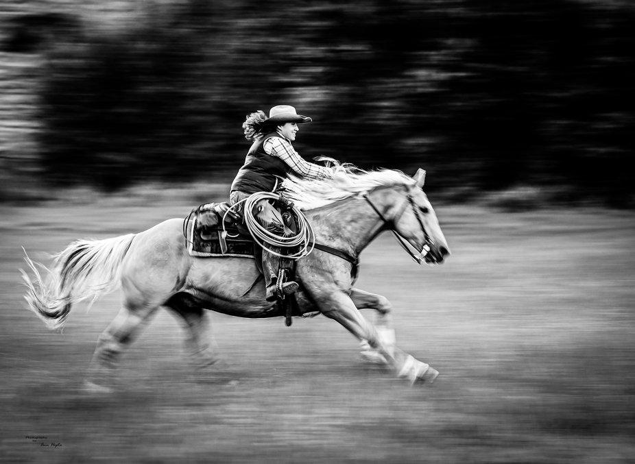 A wrangler having a blast galloping across a meadow.