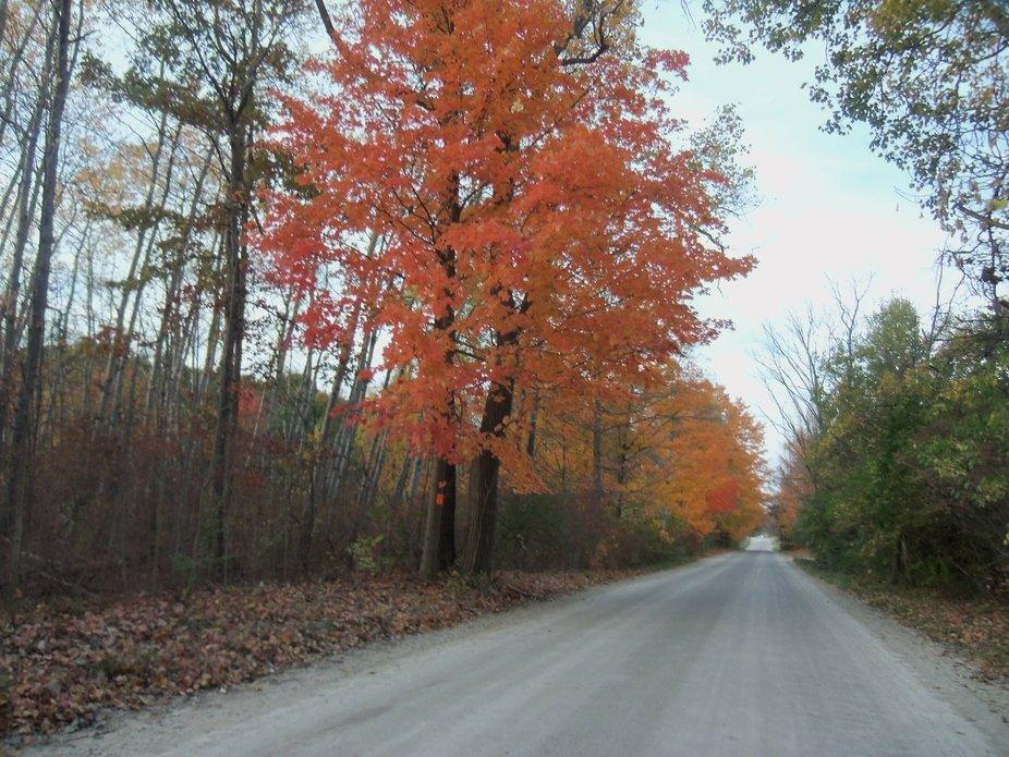 late autumn